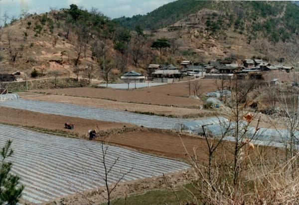 임하댐 건설로 물에 잠기기 전 마령2동 음지마